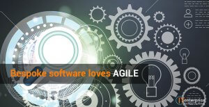 Bespoke Software Development Loves AGILE