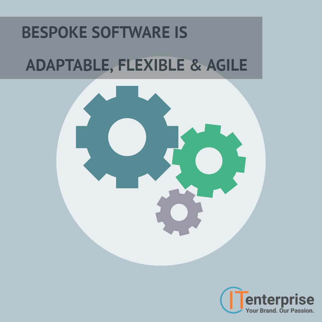bespoke software is adaptable, flexible, and agile