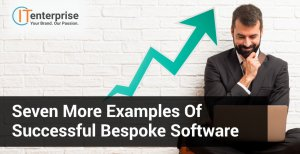 Successful Examples of Bespoke Software