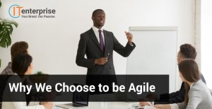 Why We Choose to be Agile-min