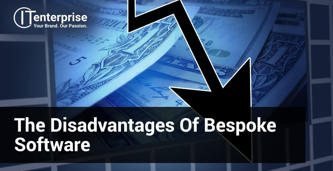 What are the disadvantages of bespoke software
